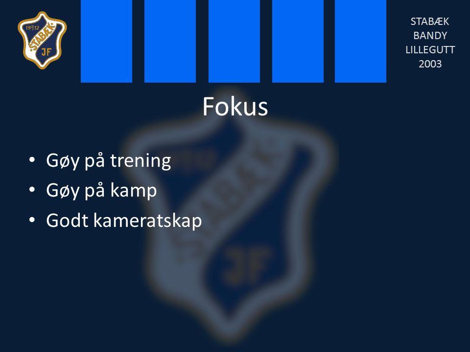 Fokus Gøy på trening Gøy på kamp Godt kameratskap STABÆK BANDY LILLEGUTT 2003