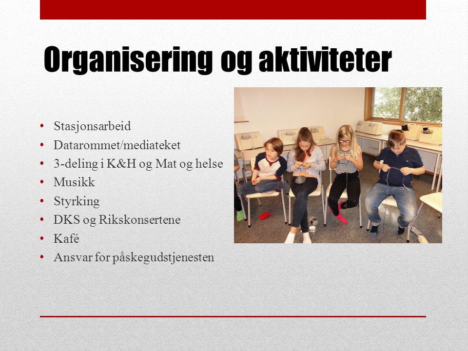 Organisering og aktiviteter Stasjonsarbeid Datarommet/mediateket 3-deling i K&H og Mat og helse Musikk Styrking DKS og Rikskonsertene Kafé Ansvar for påskegudstjenesten