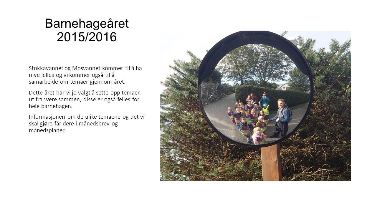 Barnehageåret 2015/2016 Stokkavannet og Mosvannet kommer til å ha mye felles og vi kommer også til å samarbeide om temaer gjennom året. Dette året har