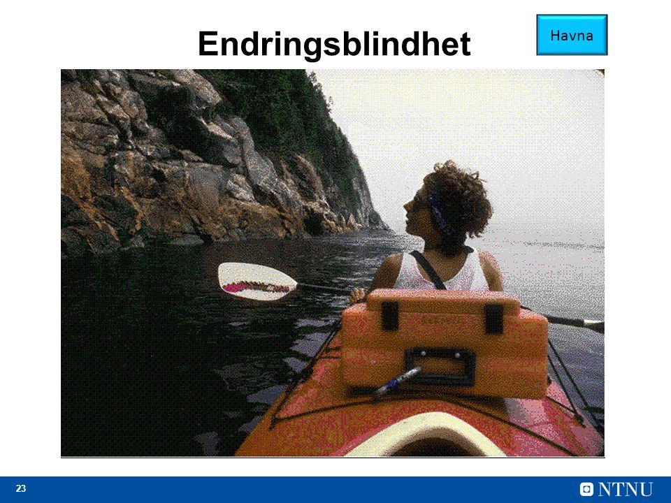 23 Endringsblindhet Havna