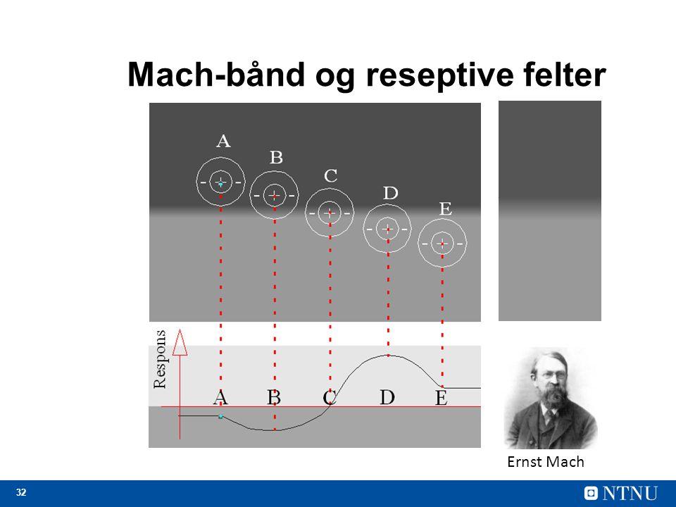 32 Mach-bånd og reseptive felter Ernst Mach