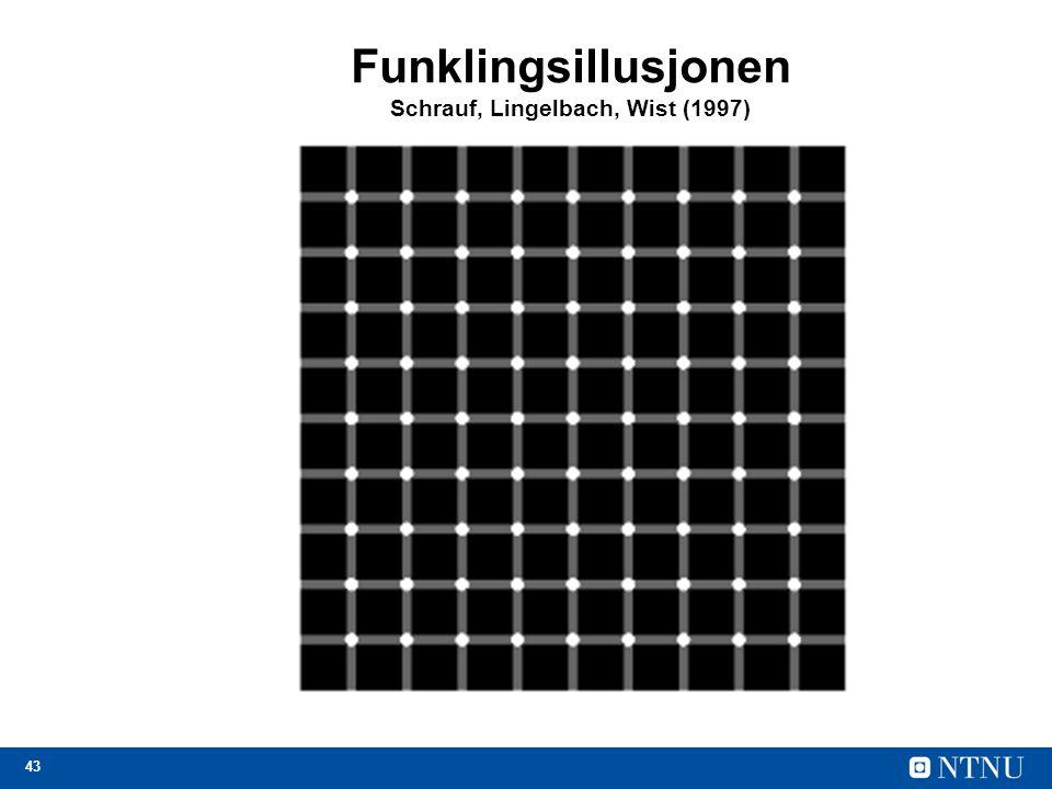 43 Funklingsillusjonen Schrauf, Lingelbach, Wist (1997)