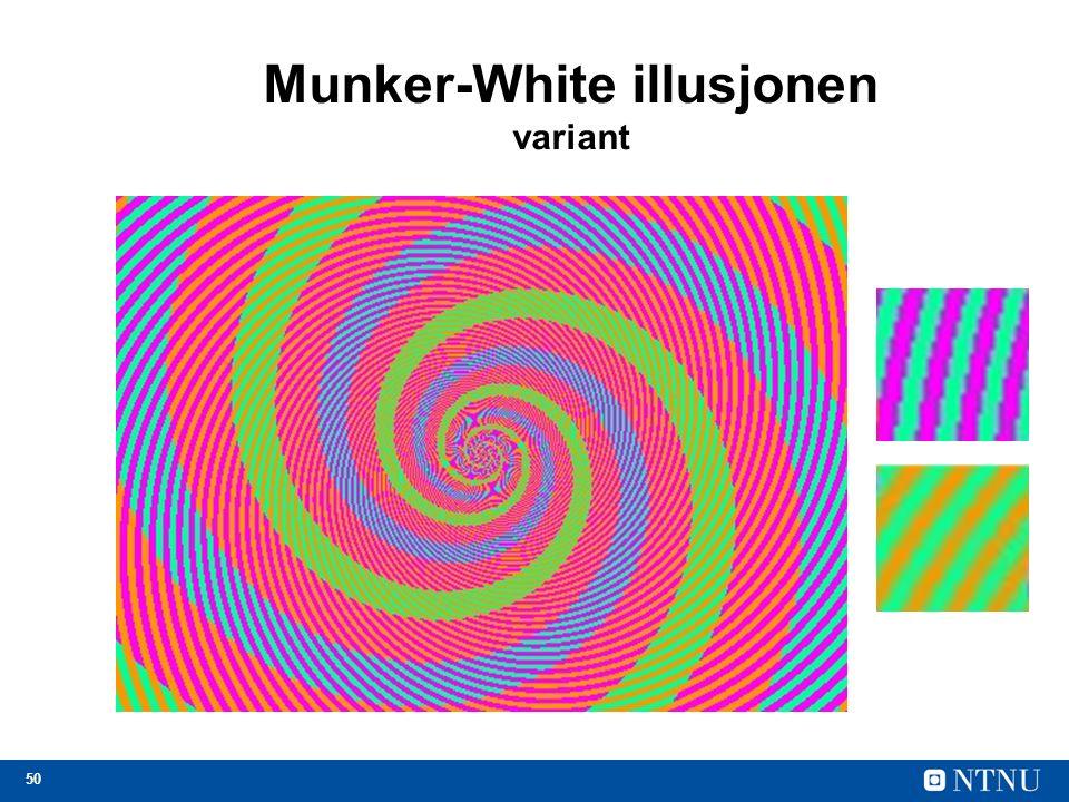 50 Munker-White illusjonen variant
