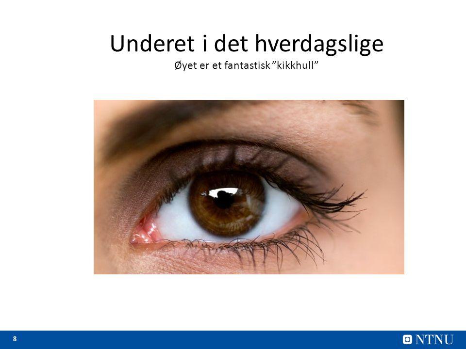 9 Fenomener knyttet til øyets anatomi Nervefibre Den blinde flekk