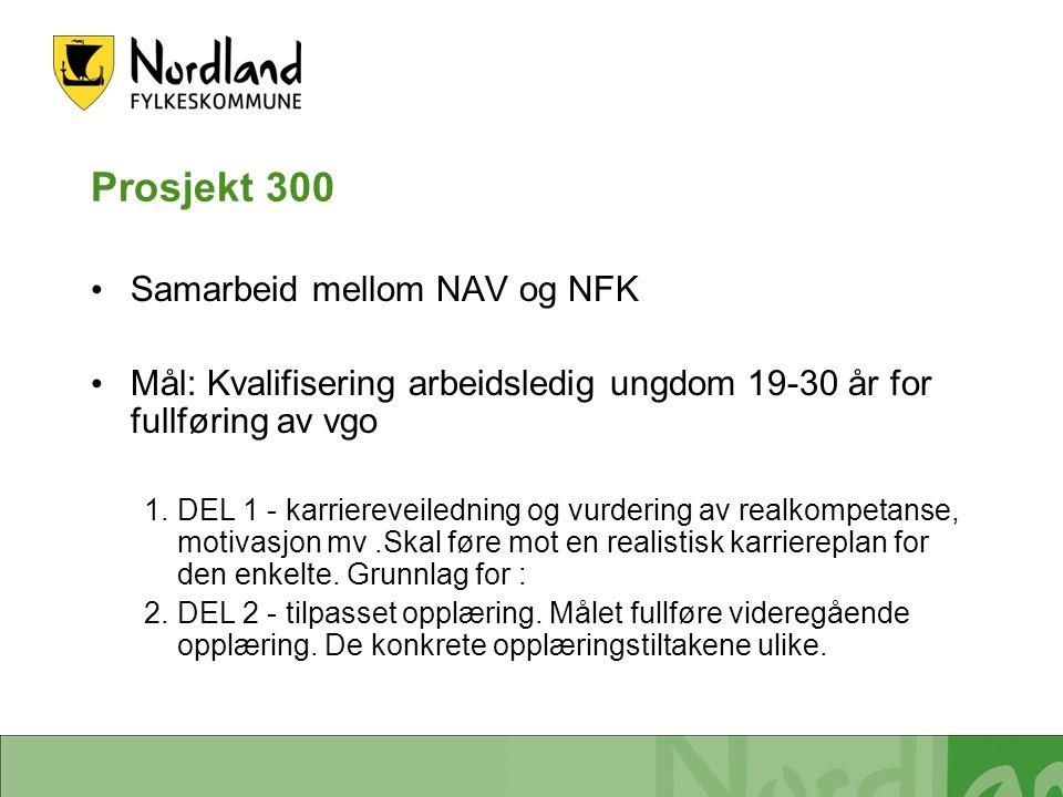 Prosjekt 300 Samarbeid mellom NAV og NFK Mål: Kvalifisering arbeidsledig ungdom 19-30 år for fullføring av vgo 1.DEL 1 - karriereveiledning og vurdering av realkompetanse, motivasjon mv.Skal føre mot en realistisk karriereplan for den enkelte.