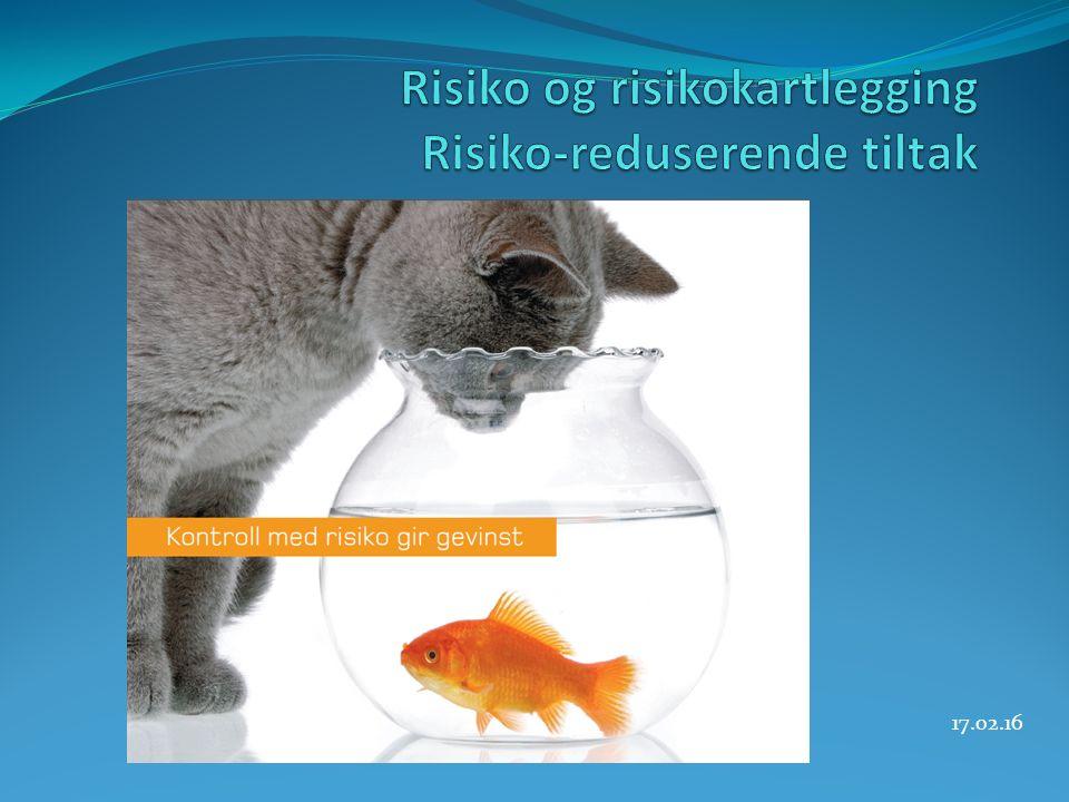 Eks Vi skal gjøre en risikovurdering på verksted.Konsekvensområde: Menneske.