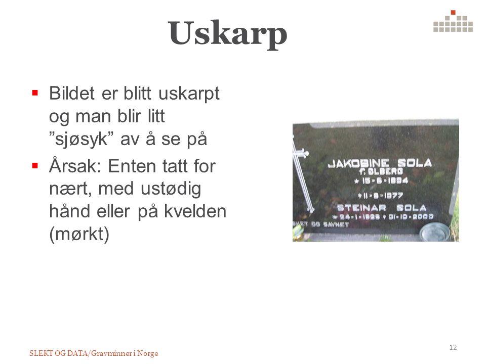 Uskarp SLEKT OG DATA/Gravminner i Norge 12  Bildet er blitt uskarpt og man blir litt sjøsyk av å se på  Årsak: Enten tatt for nært, med ustødig hånd eller på kvelden (mørkt)