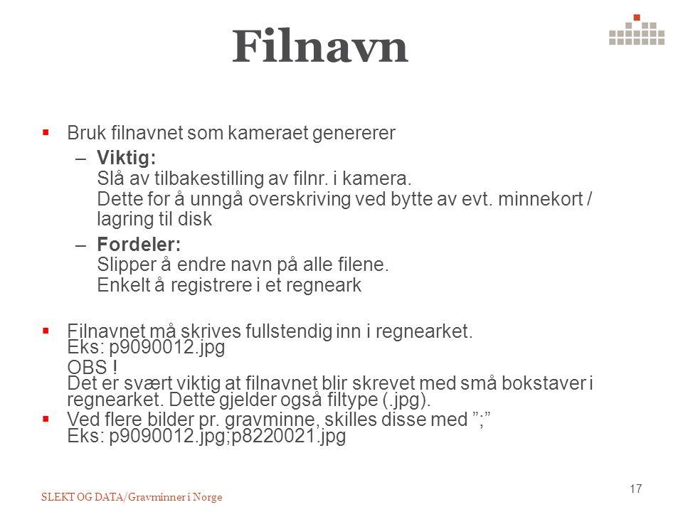 Filnavn SLEKT OG DATA/Gravminner i Norge 17  Bruk filnavnet som kameraet genererer –Viktig: –Viktig: Slå av tilbakestilling av filnr.