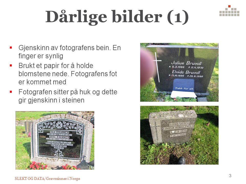 Dårlige bilder (1) 3 SLEKT OG DATA/Gravminner i Norge  Gjenskinn av fotografens bein.