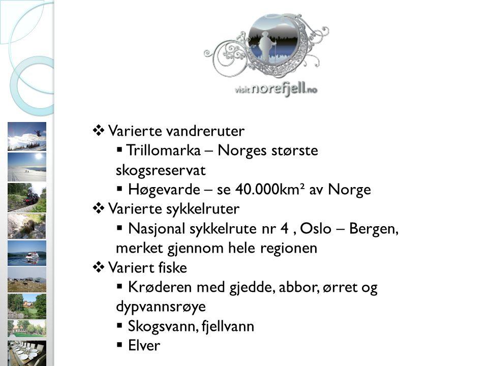  Varierte vandreruter  Trillomarka – Norges største skogsreservat  Høgevarde – se 40.000km² av Norge  Varierte sykkelruter  Nasjonal sykkelrute nr 4, Oslo – Bergen, merket gjennom hele regionen  Variert fiske  Krøderen med gjedde, abbor, ørret og dypvannsrøye  Skogsvann, fjellvann  Elver