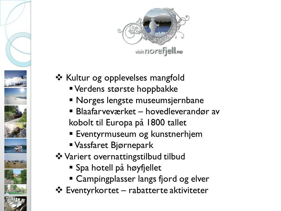  Kultur og opplevelses mangfold  Verdens største hoppbakke  Norges lengste museumsjernbane  Blaafarveværket – hovedleverandør av kobolt til Europa