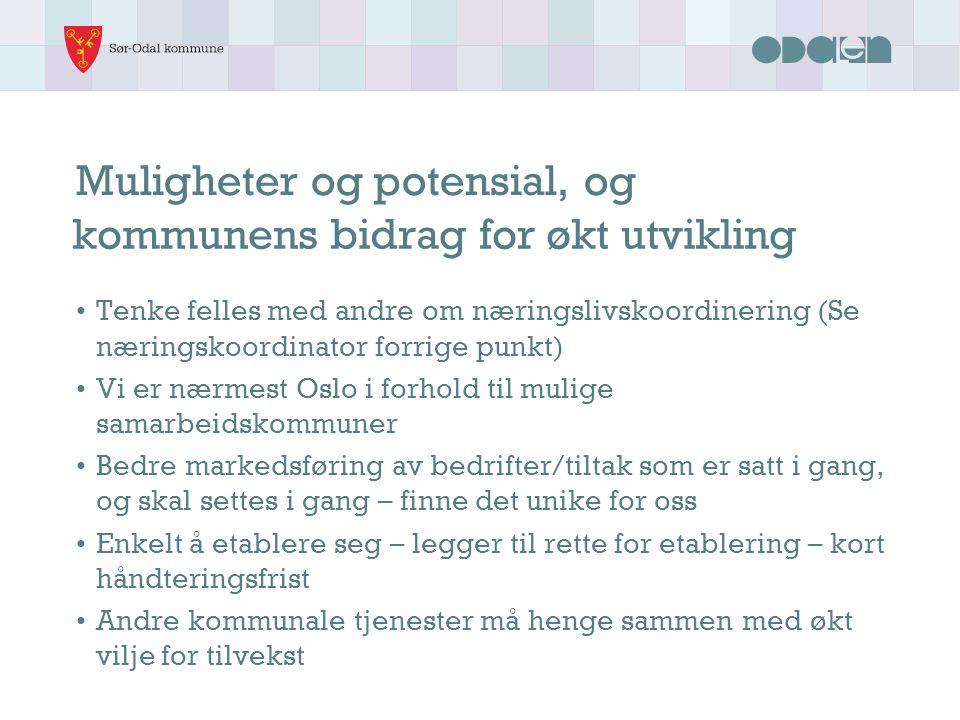Muligheter og potensial, og Tenke felles med andre om næringslivskoordinering (Se næringskoordinator forrige punkt) Vi er nærmest Oslo i forhold til m