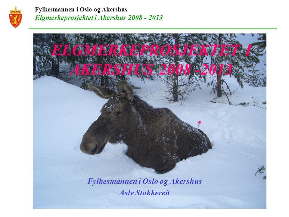 ELGMERKEPROSJEKTET I AKERSHUS 2008 -2013 Fylkesmannen i Oslo og Akershus Asle Stokkereit Fylkesmannen i Oslo og Akershus Elgmerkeprosjektet i Akershus 2008 - 2013