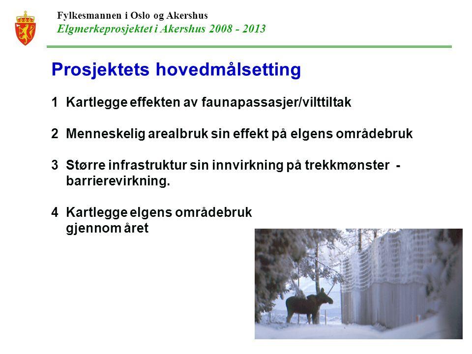 Fylkesmannen i Oslo og Akershus Elgmerkeprosjektet i Akershus 2008 - 2013 Prosjektets hovedmålsetting 1 Kartlegge effekten av faunapassasjer/vilttiltak 2 Menneskelig arealbruk sin effekt på elgens områdebruk 3 Større infrastruktur sin innvirkning på trekkmønster - barrierevirkning.