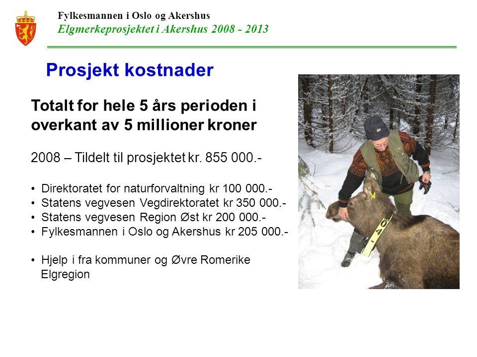 Fylkesmannen i Oslo og Akershus Elgmerkeprosjektet i Akershus 2008 - 2013 Metode og tidspunkt for merking Første merkingen ble gjennomført v.h.a.