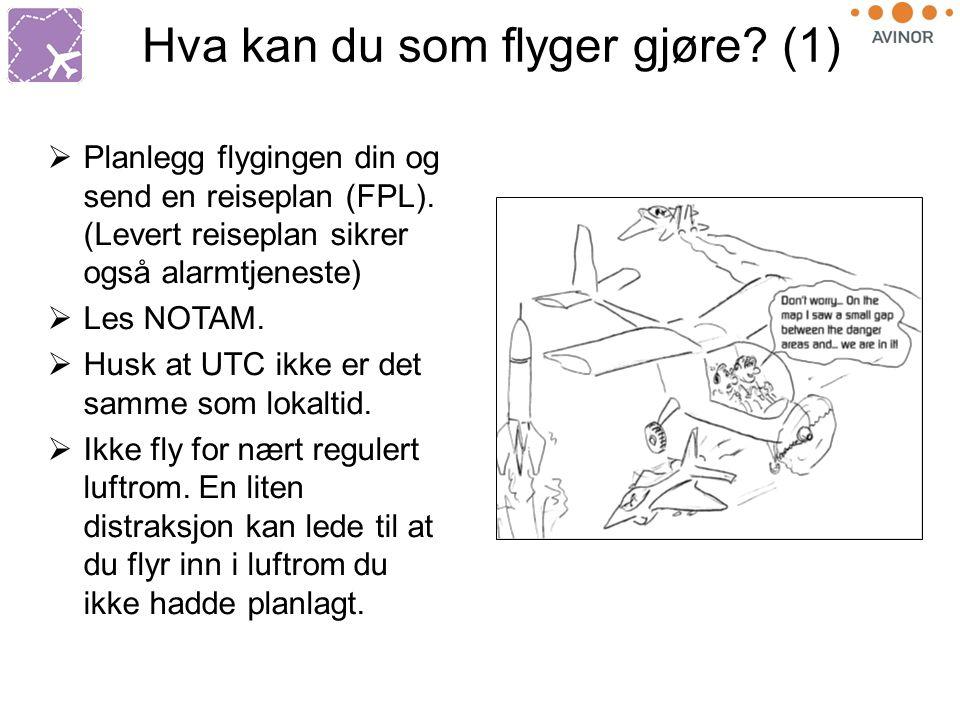 Hva kan du som flyger gjøre. (1)  Planlegg flygingen din og send en reiseplan (FPL).