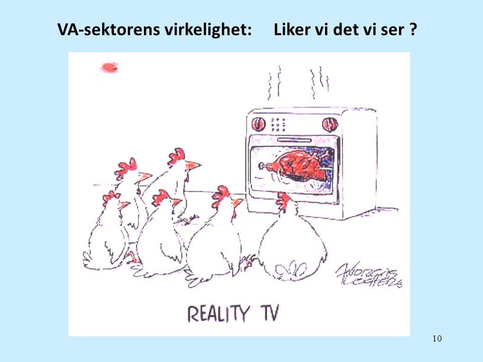 10 VA-sektorens virkelighet: Liker vi det vi ser ?
