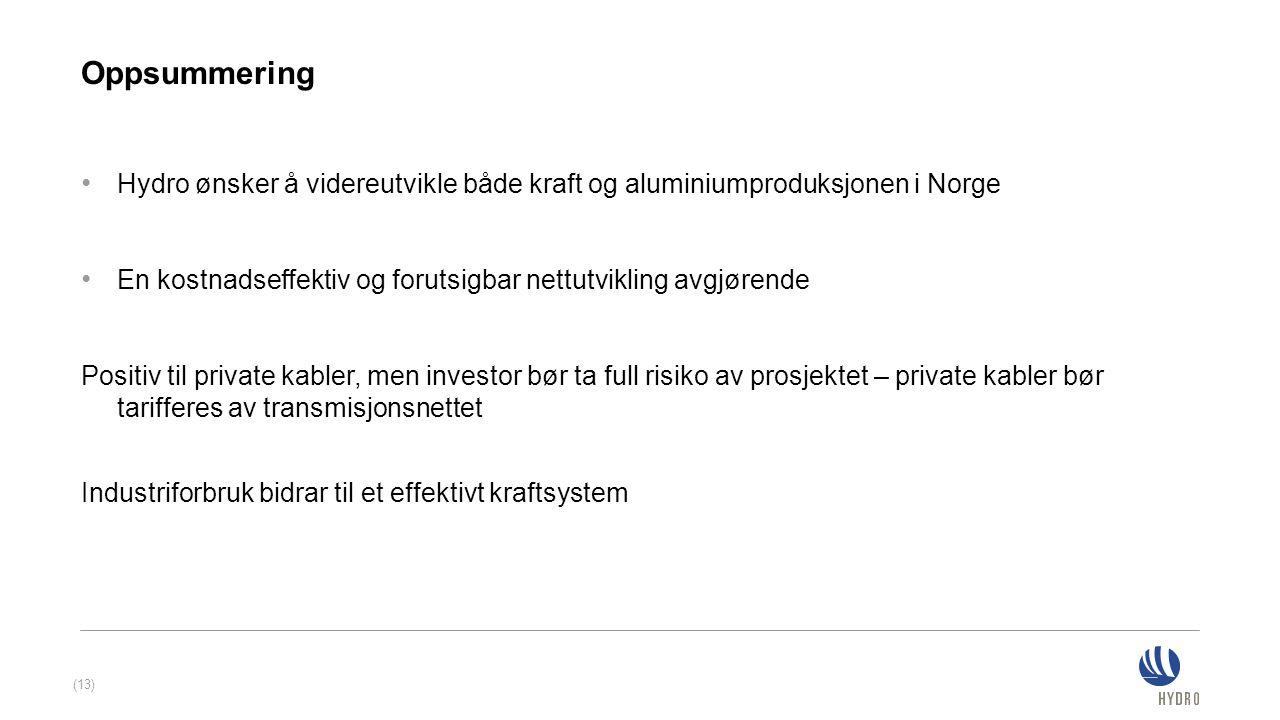 Oppsummering Hydro ønsker å videreutvikle både kraft og aluminiumproduksjonen i Norge En kostnadseffektiv og forutsigbar nettutvikling avgjørende Posi