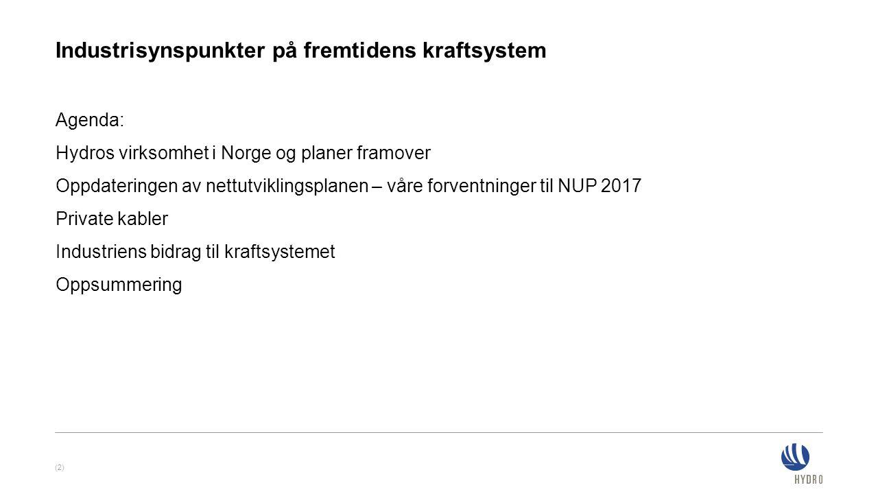 Agenda: Hydros virksomhet i Norge og planer framover Oppdateringen av nettutviklingsplanen – våre forventninger til NUP 2017 Private kabler Industrien