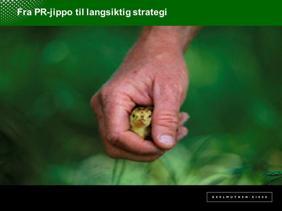 Fra PR-jippo til langsiktig strategi