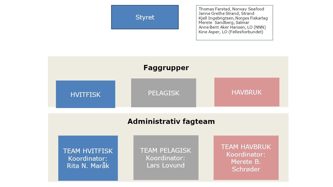 Styret Faggrupper HVITFISK HAVBRUK PELAGISK Fiskehel se Administrativ fagteam TEAM HVITFISK Koordinator: Rita N.