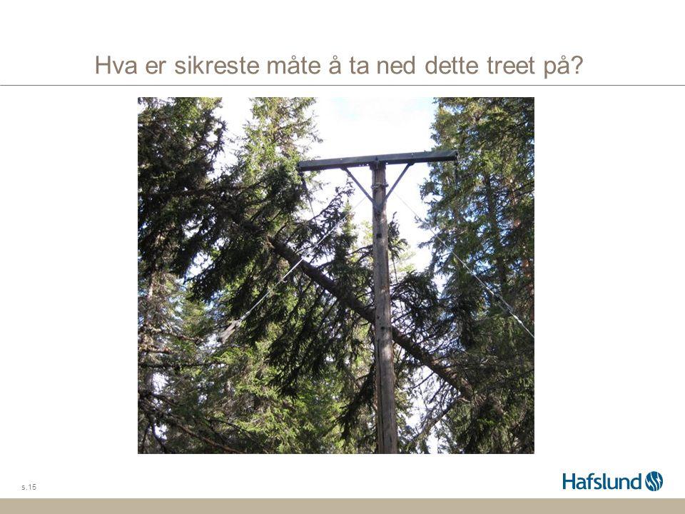 Hva er sikreste måte å ta ned dette treet på? s.15