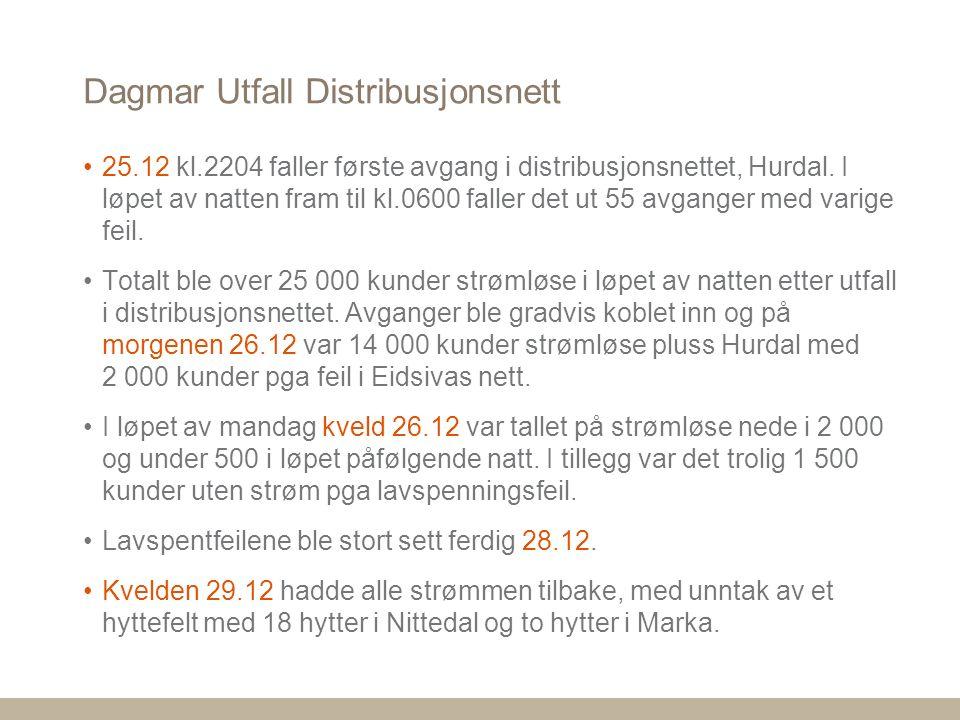 Dagmar Utfall Distribusjonsnett 25.12 kl.2204 faller første avgang i distribusjonsnettet, Hurdal.