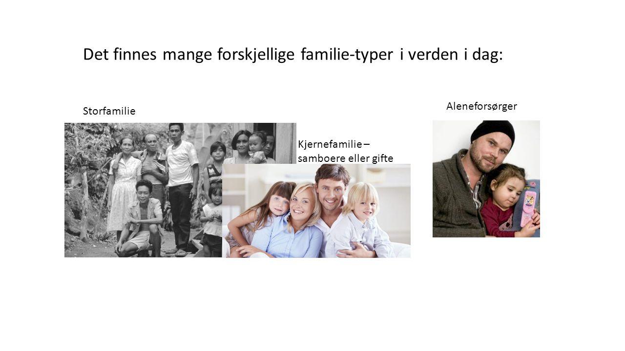 Det finnes mange forskjellige familie-typer i verden i dag: Storfamilie Kjernefamilie – samboere eller gifte Aleneforsørger