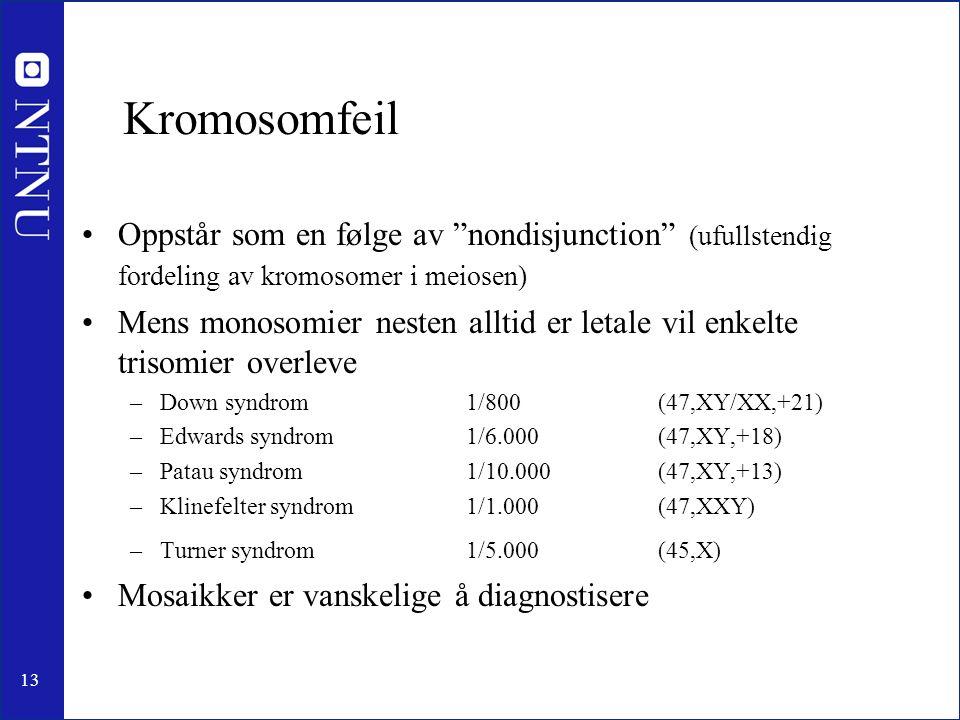 13 Kromosomfeil Oppstår som en følge av nondisjunction (ufullstendig fordeling av kromosomer i meiosen) Mens monosomier nesten alltid er letale vil enkelte trisomier overleve –Down syndrom1/800(47,XY/XX,+21) –Edwards syndrom 1/6.000(47,XY,+18) –Patau syndrom1/10.000(47,XY,+13) –Klinefelter syndrom 1/1.000(47,XXY) –Turner syndrom1/5.000(45,X) Mosaikker er vanskelige å diagnostisere