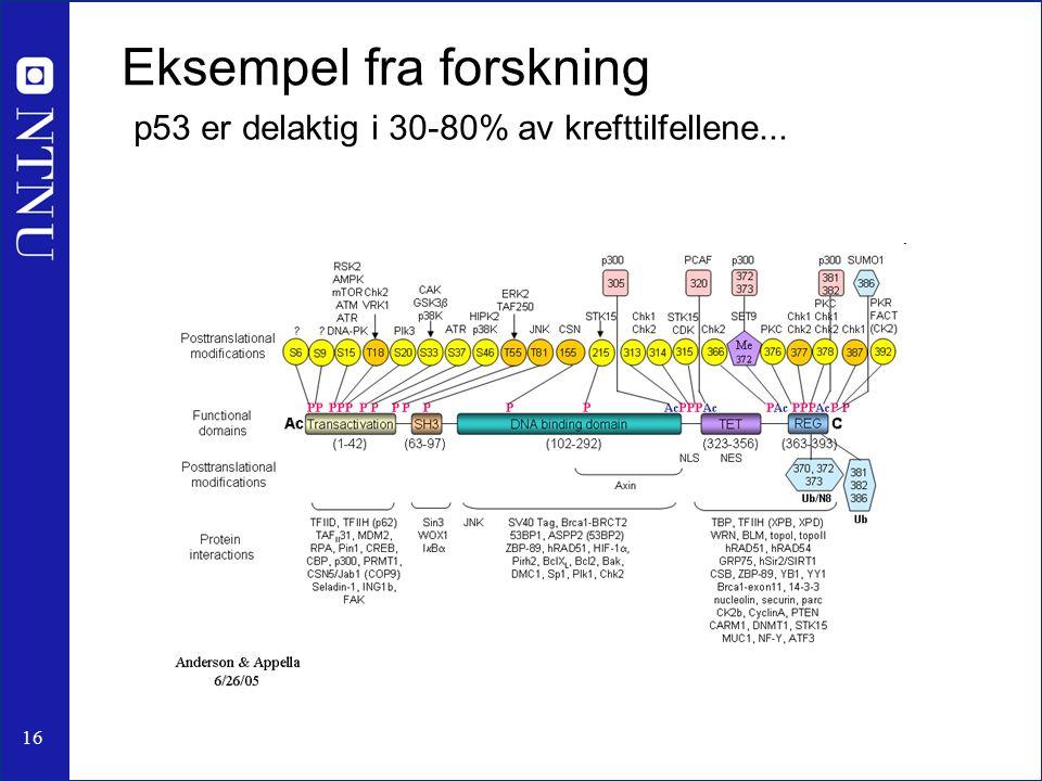 16 p53 er delaktig i 30-80% av krefttilfellene... Eksempel fra forskning