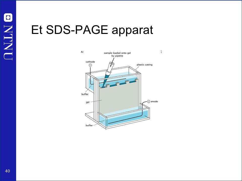 40 Et SDS-PAGE apparat