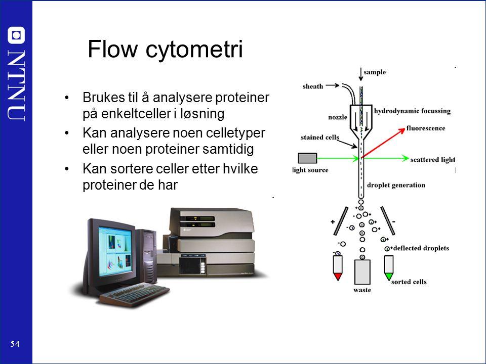 54 Flow cytometri Brukes til å analysere proteiner på enkeltceller i løsning Kan analysere noen celletyper eller noen proteiner samtidig Kan sortere celler etter hvilke proteiner de har