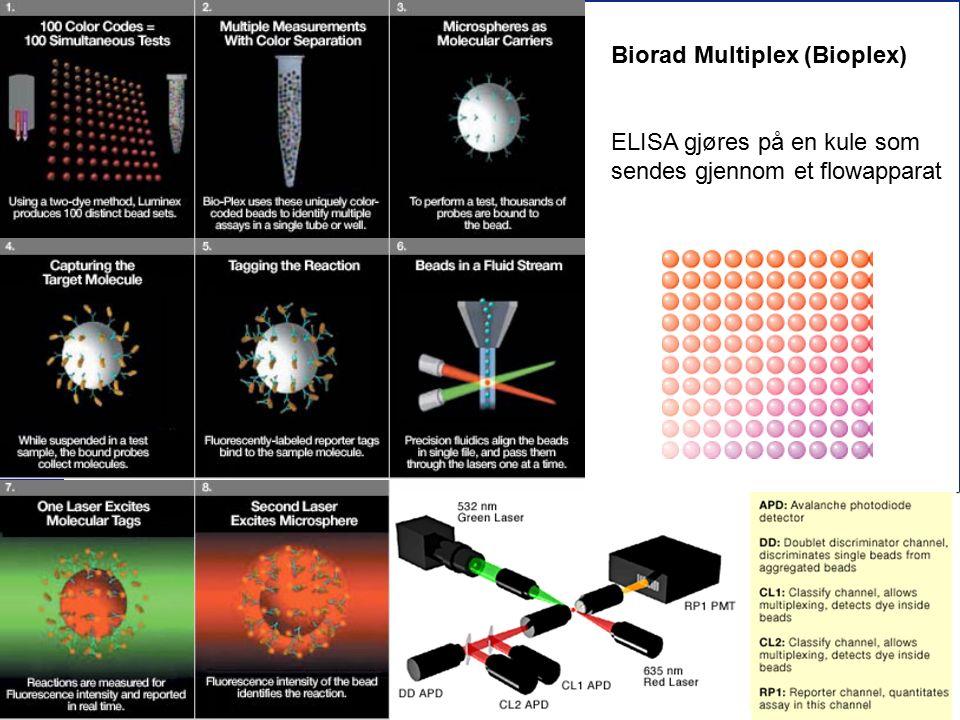 56 Biorad Multiplex (Bioplex) ELISA gjøres på en kule som sendes gjennom et flowapparat