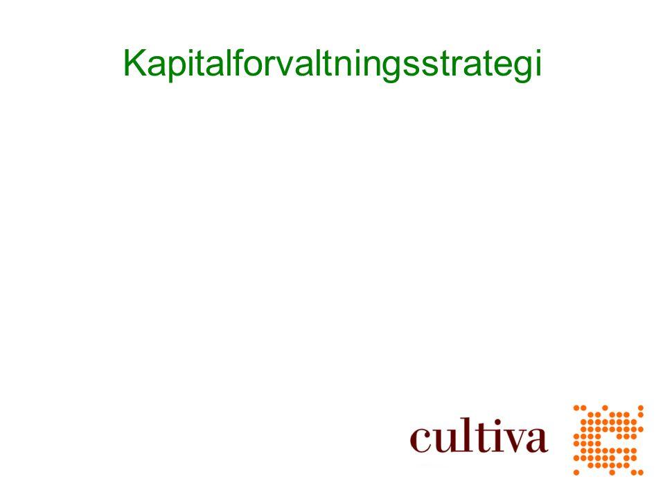 Kapitalforvaltningsstrategi