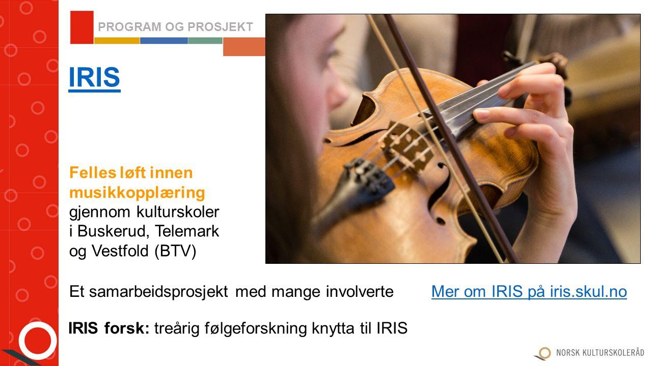 Norsk kulturskoleråd vil i samarbeid med Stiftelsen Fargespill initiere tiltak som særlig inkluderer og involverer barn som kommer til Norge som innvandrere eller flyktninger Fargespill- samarbeid Konferansen Fargespill – Flere farger 2016 29.