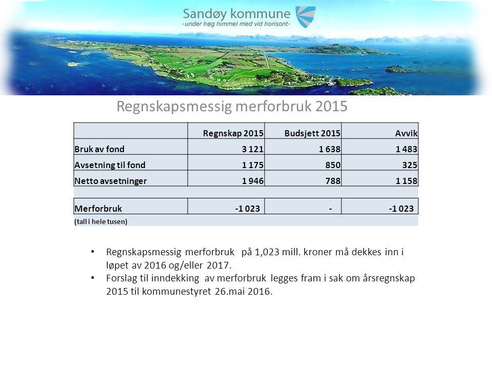 Driftsresultat 2015 per budsjettområde Positivt avvik på 3,9 mill.