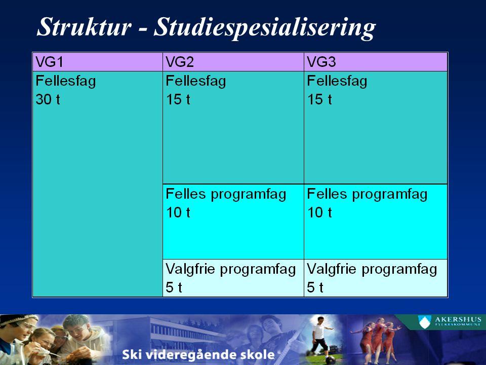 Struktur - Studiespesialisering