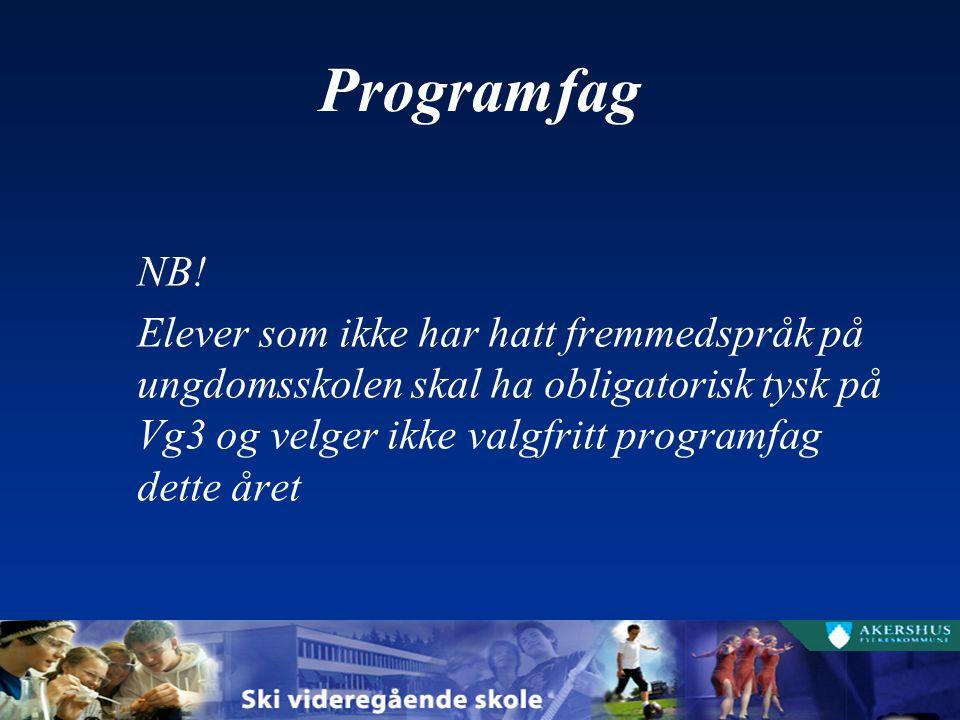 Programfag NB.