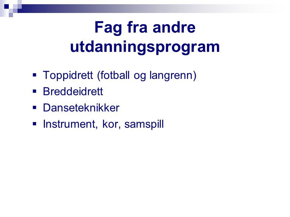 Fag fra andre utdanningsprogram  Toppidrett (fotball og langrenn)  Breddeidrett  Danseteknikker  Instrument, kor, samspill