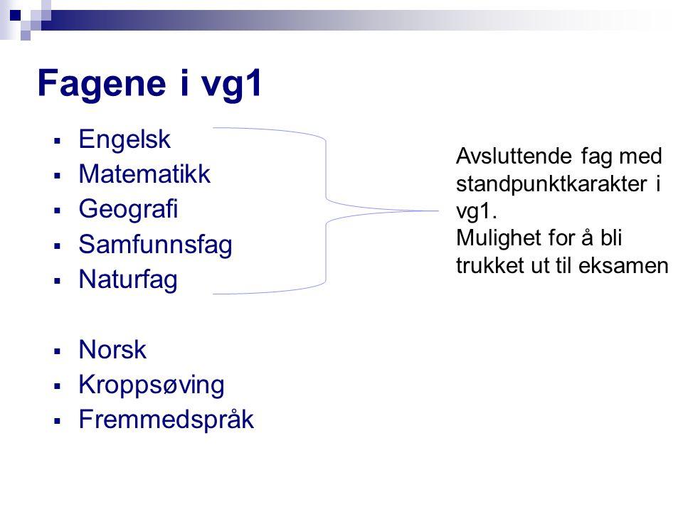 Fagene i vg1  Engelsk  Matematikk  Geografi  Samfunnsfag  Naturfag  Norsk  Kroppsøving  Fremmedspråk Avsluttende fag med standpunktkarakter i vg1.