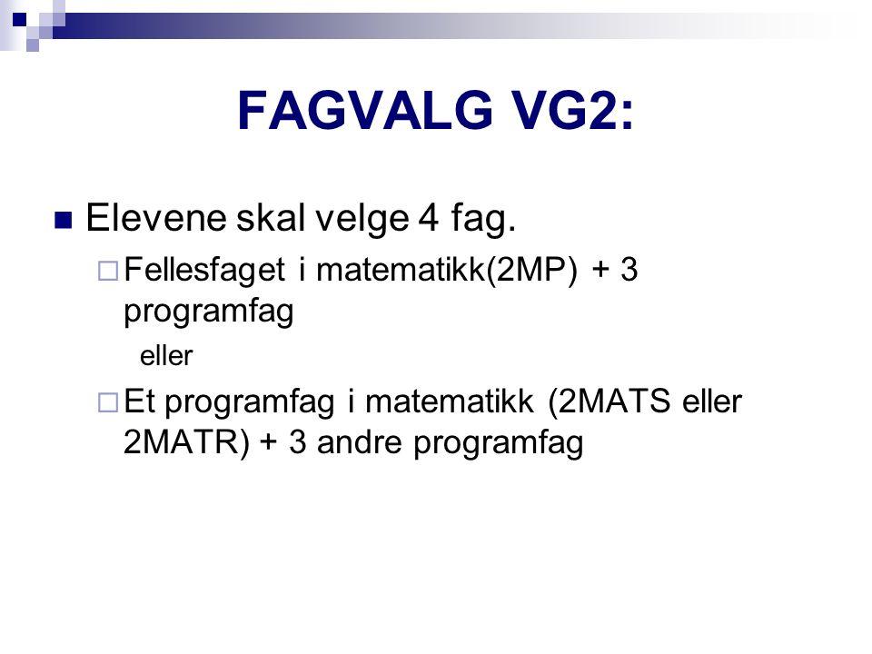 Programfagene er organisert innen to ulike programområder  Realfag  Språk, samfunnsfag og økonomi