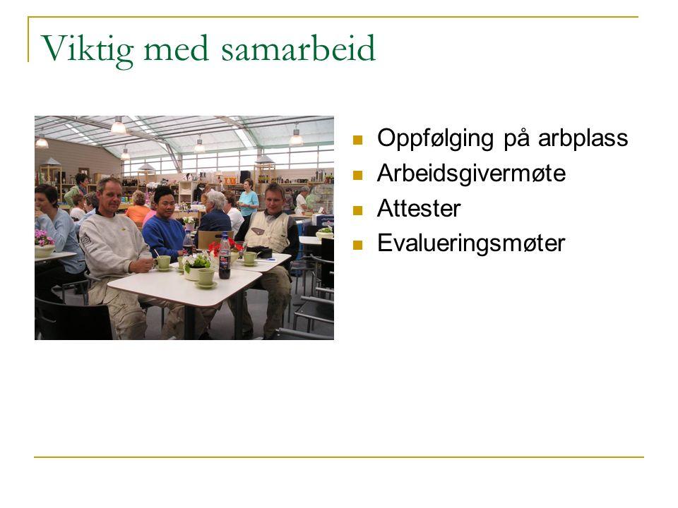 Viktig med samarbeid Oppfølging på arbplass Arbeidsgivermøte Attester Evalueringsmøter