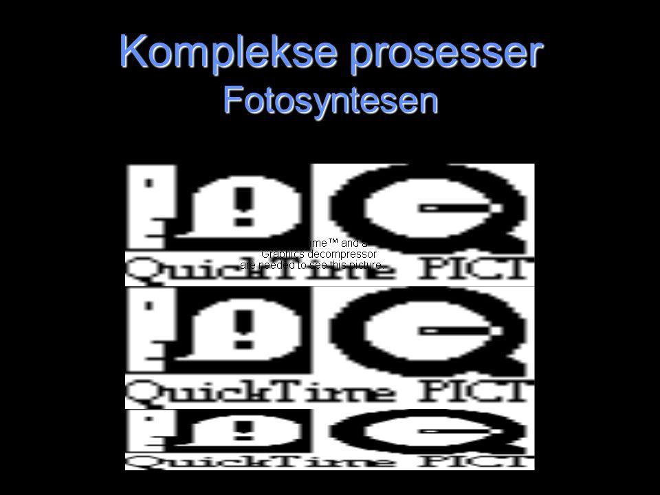 Simuleringsprogrammer Tre nivåer Essensielt verktøy for å vise en del prosesser –F.