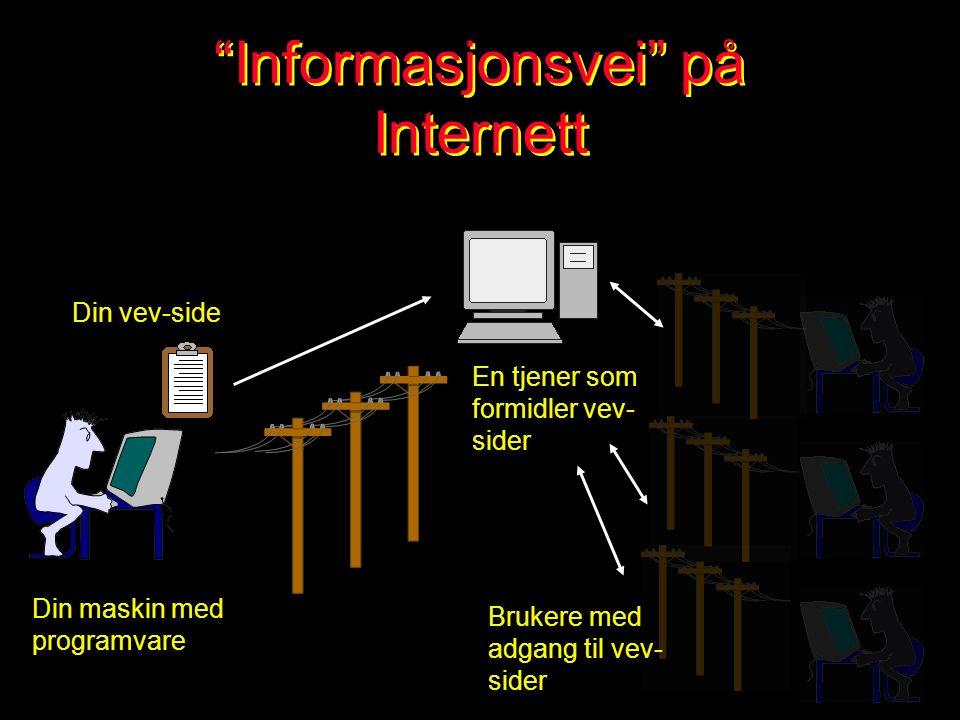 Bruk av Internett Generelt om Internett Bruk av Internett i prosjekt arbeid Informasjonssøking Bruk av nettavis