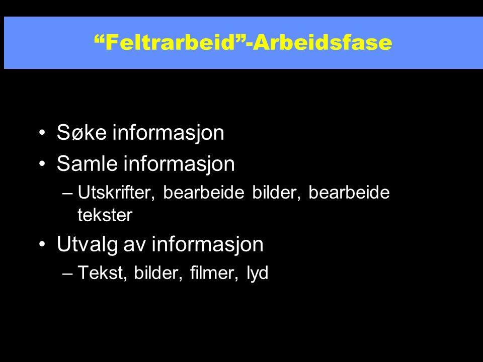 Valg av informasjonskilde og søkemetode –Hva finnes av kilder (CD-ROM, Internett).