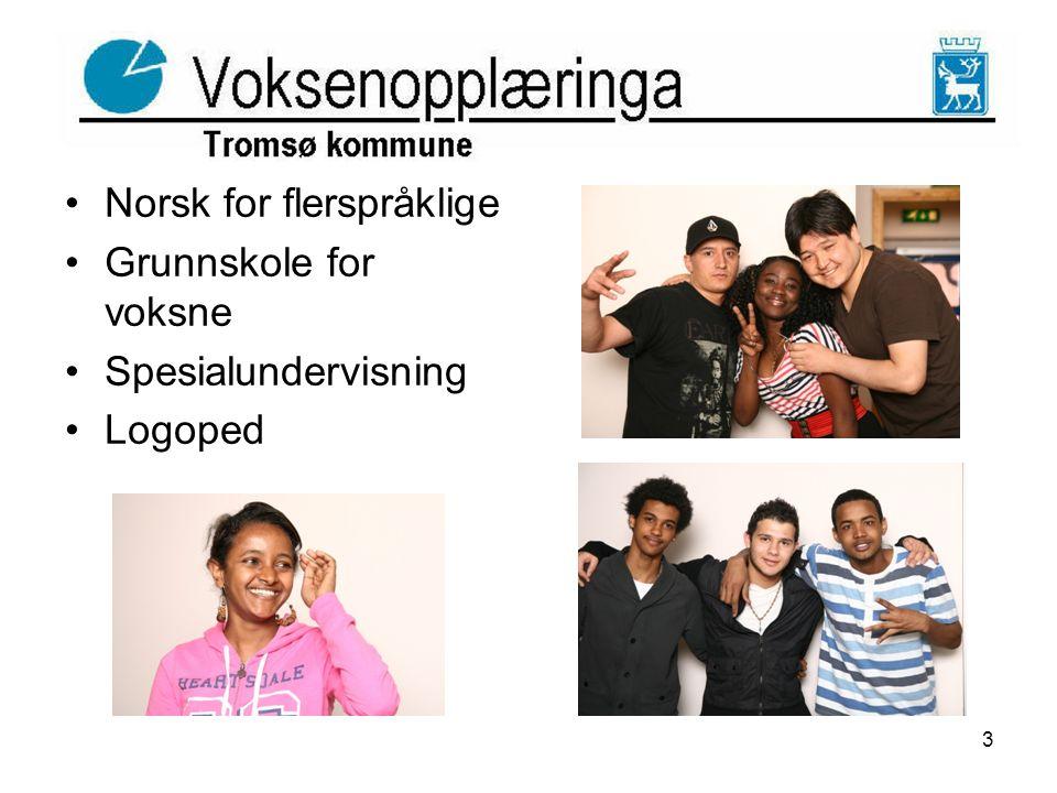 Norsk for flerspråklige Grunnskole for voksne Spesialundervisning Logoped 3