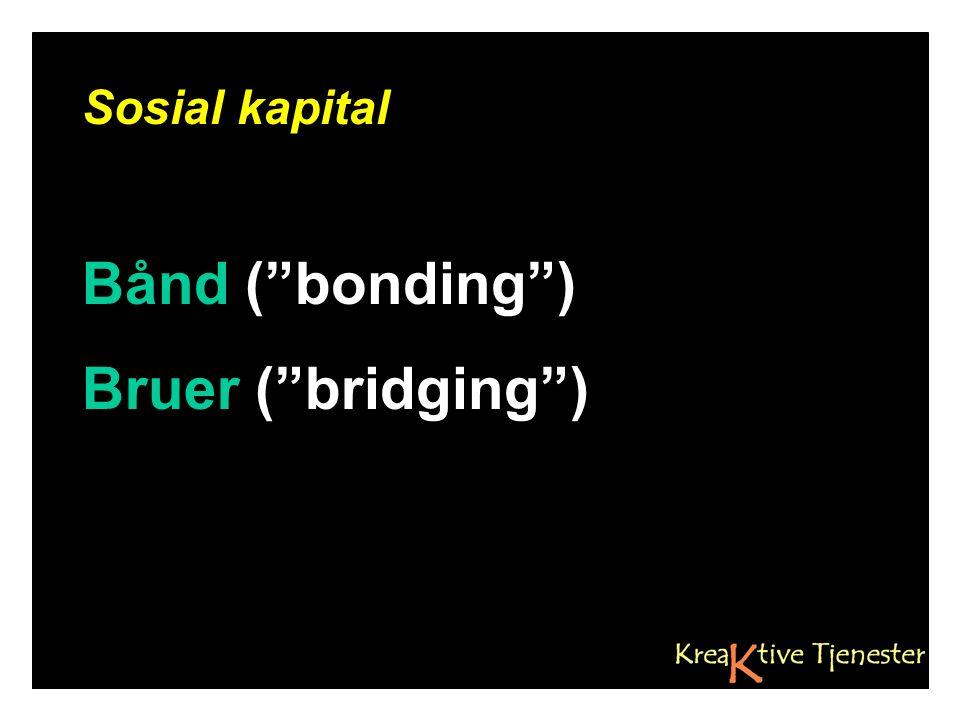 """Sosial kapital Bånd (""""bonding"""") Bruer (""""bridging"""")"""