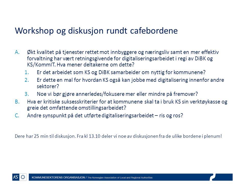Tilgang til megleropplysninger i Bærum kommune