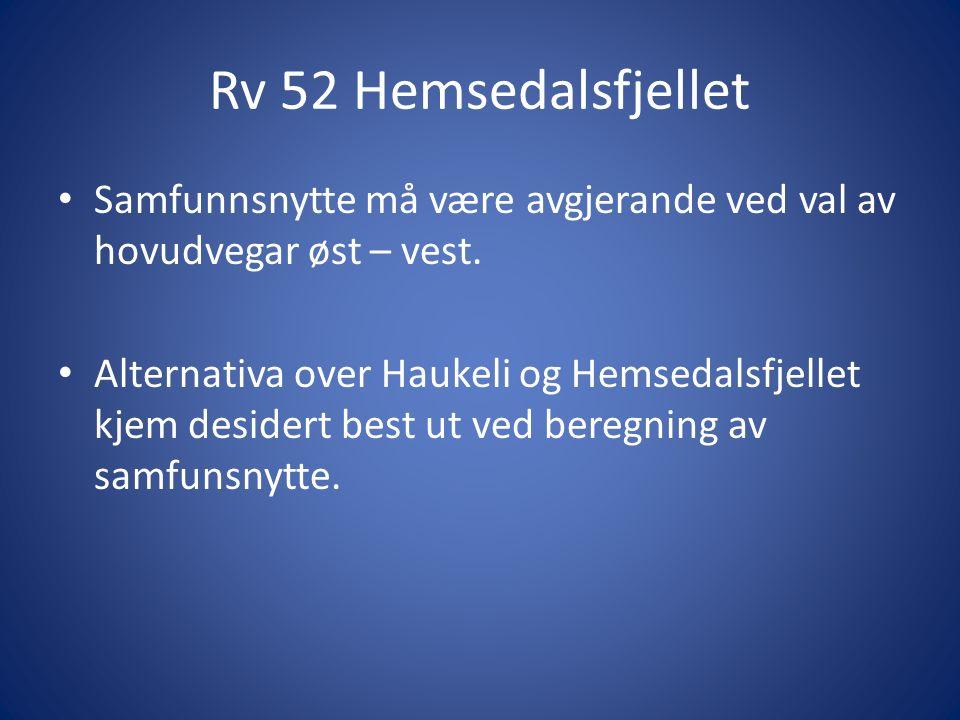 Rv 52 Hemsedalsfjellet Samfunnsnytte må være avgjerande ved val av hovudvegar øst – vest.