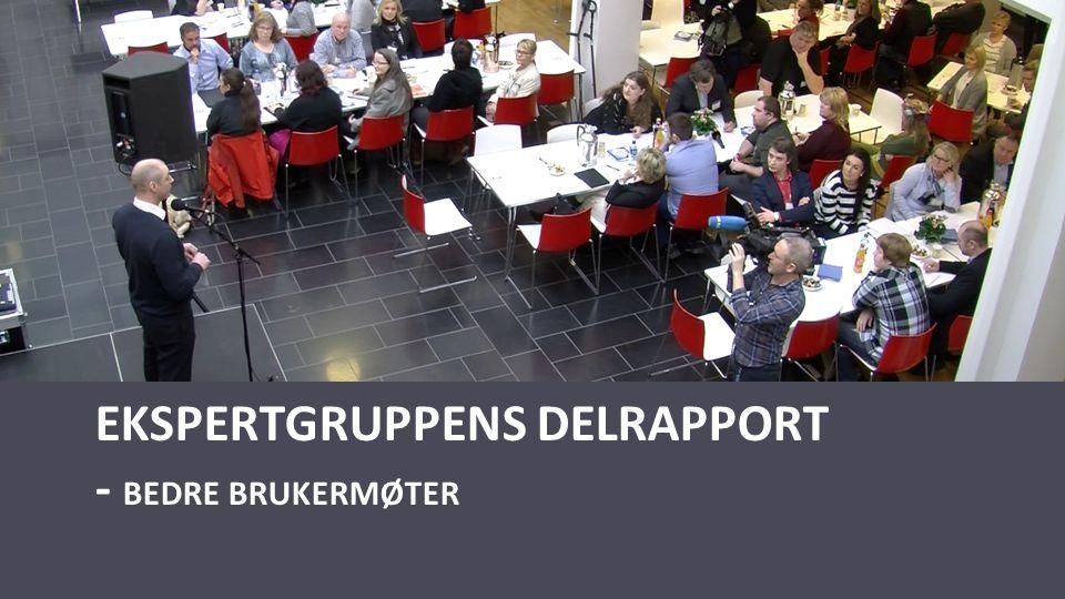 EKSPERTGRUPPENS DELRAPPORT - BEDRE BRUKERMØTER